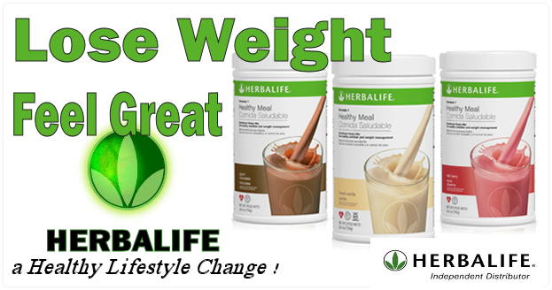 program diet herbalife